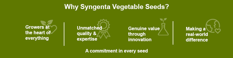 Syngenta Gemüsesaatgut - Reasons to believe