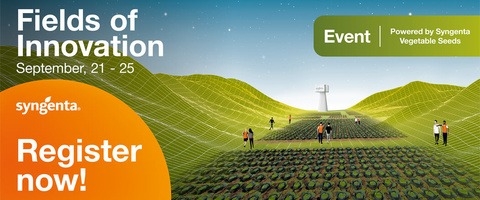 Syngenta Gemüsesaatgut - Fields of inovation